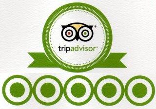 www.tripadvisor.it/Restaurant_Review-g1180044-d3278355-Reviews-Trattoria_degli_Artisti-Predappio_Province_of_Forli_Cesena_Emilia_Romagna.html