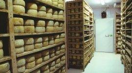 Armadi per stagionatura formaggi