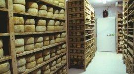 Progettazione Impianti frigoriferi per negozi di alimenti