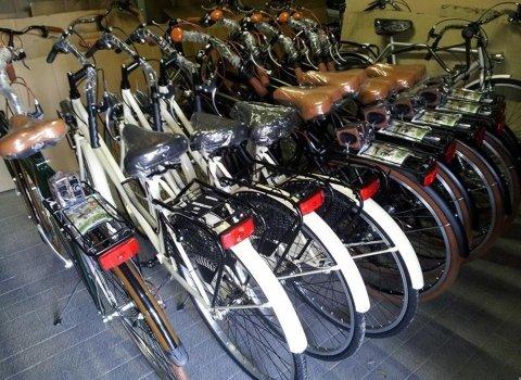 Biciclette Brescia