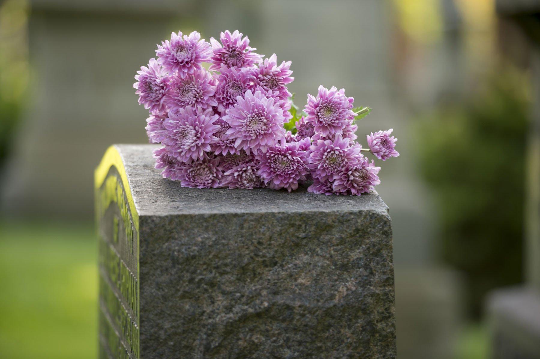 dei crisantemi sopra una lapide di pietra in un cimitero