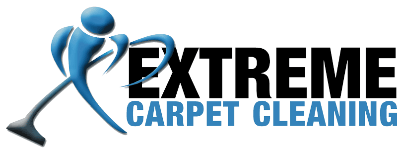 extreme carpet cleaning christchurch nz carpet cleaning