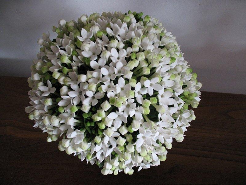 bouquet_fiori_bianchi_bovardia