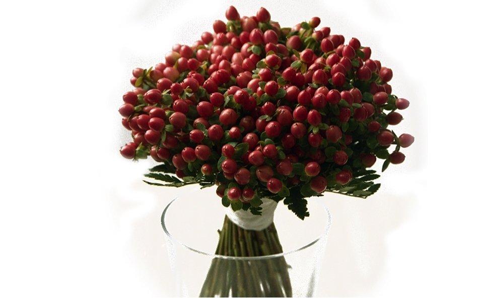 bouquet di bacche rosse