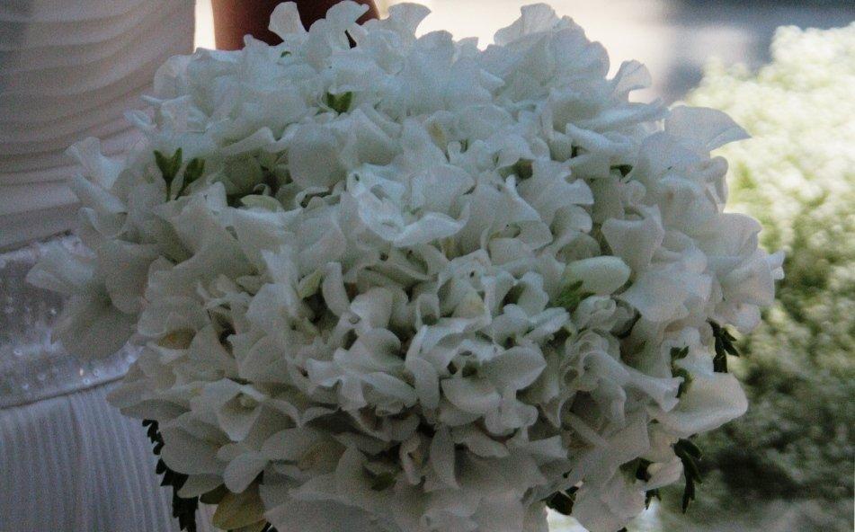 bouquet di fresie bianche