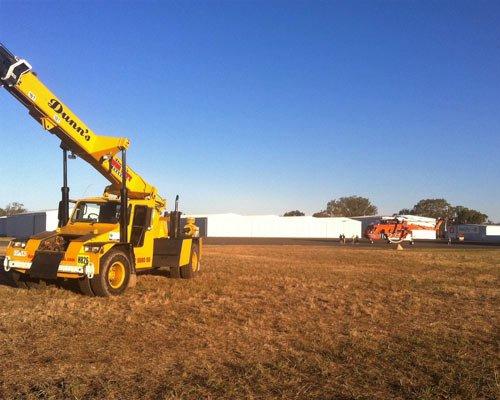 crane in a field