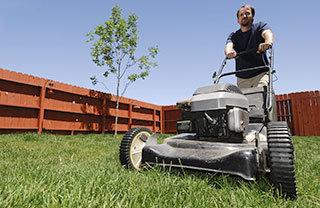 Landscaping & Tree Service Edinboro, PA