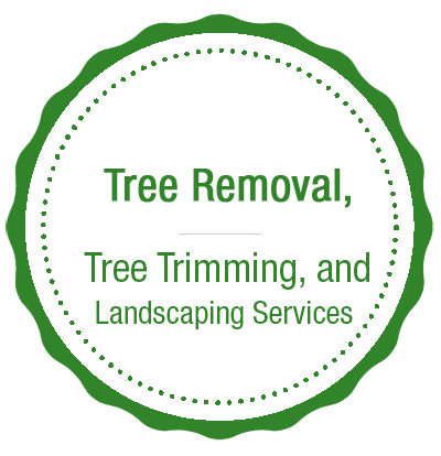 Tree Service Edinboro, PA