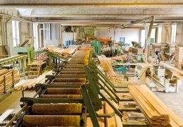 produzione legname costruzioni
