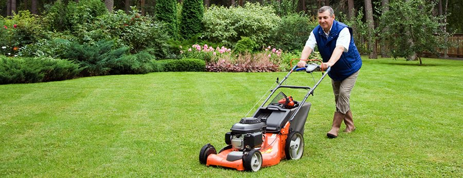 Lawn Care Wilmington, NC