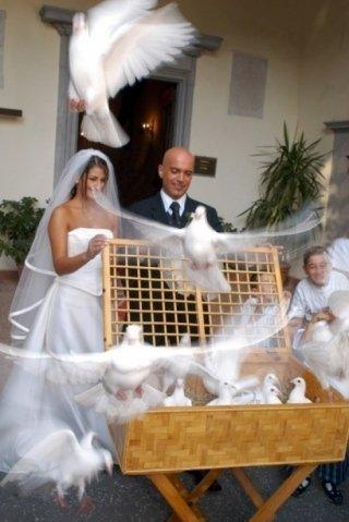 foto digitali sposo, foto digitali sposa, foto digitali per cerimonie