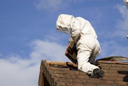 Eliminazione nido di vespe