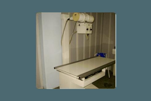 Grazie a questo macchinario, riusciamo a fare radiografie anche agli animali di taglia considerevole.