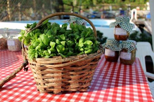cesto con verdure