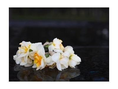 necrologi funebri tradizionali