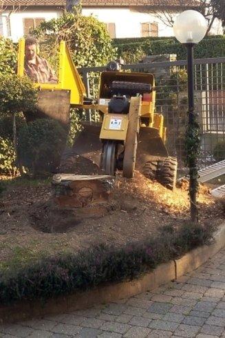 Un servizio completo per la manutenzione e la ristrutturazione di aree di verde.