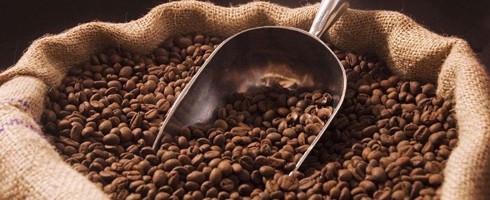 torrefazione caffè Novara