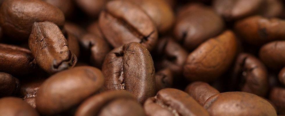 vendita caffè Novara