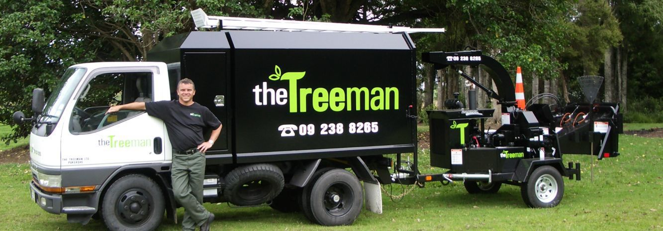 A tree care expert in Franklin