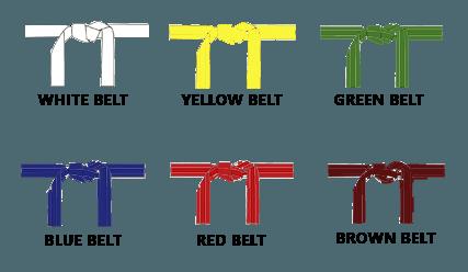 Little Ninjas Belt Ranks