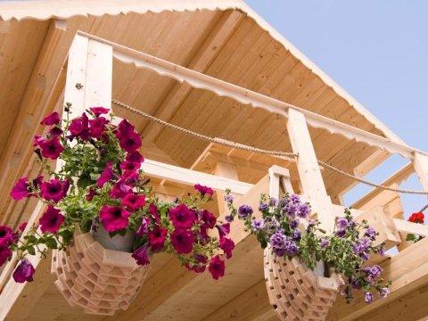 Tetti in legno e tettoie