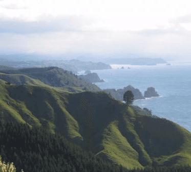 Rural Coastal Subdivision