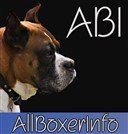 all-boxer-info-logo