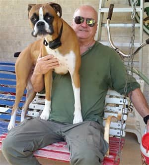 Boxer-dog-that-survived-poisoning