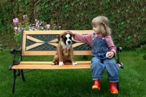 Young girl with Boxer dog on bench