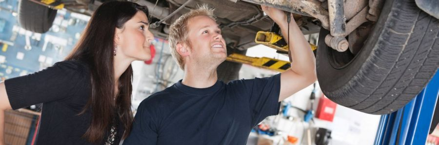 Professional performs a vehicle inspection in Tauranga