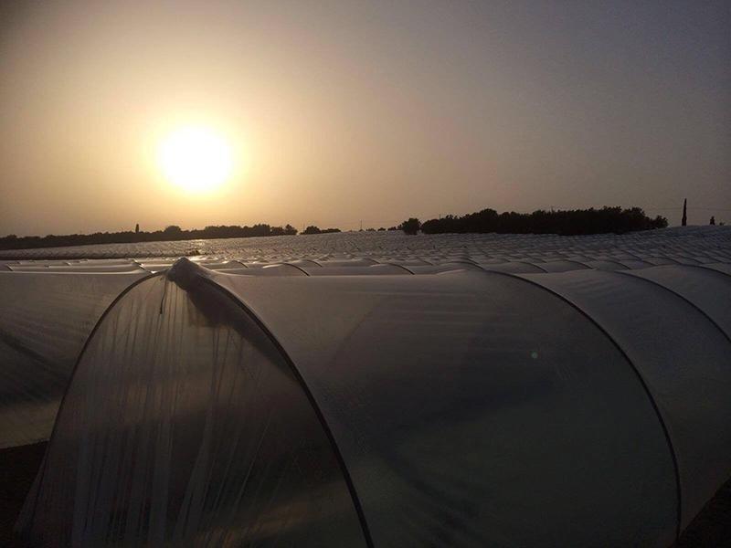 serra al tramonto vista da fuori
