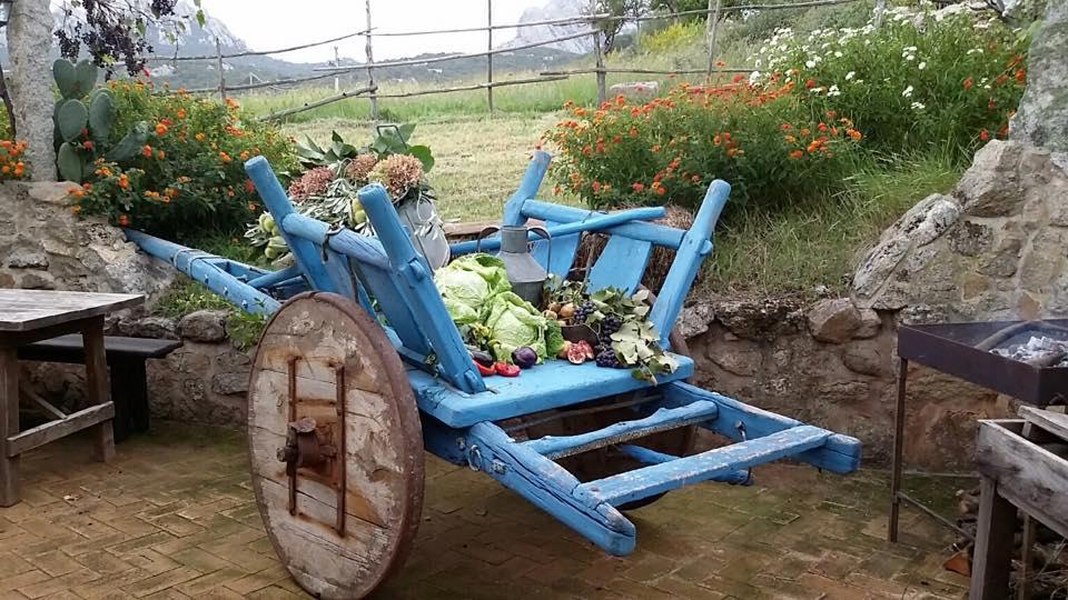 carretto di legno con verdure fresche
