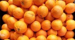 vendita frutta di stagione, fornitura frutta di stagione, negozio frutta di stagione