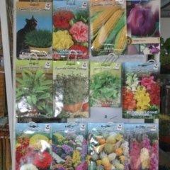sementi ortaggi,