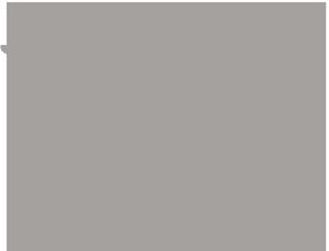 medical grey icon