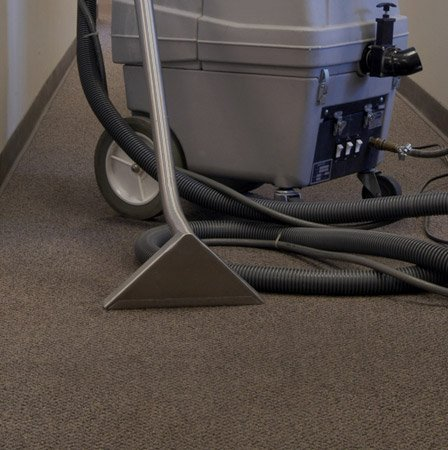 Hoover & clean carpet