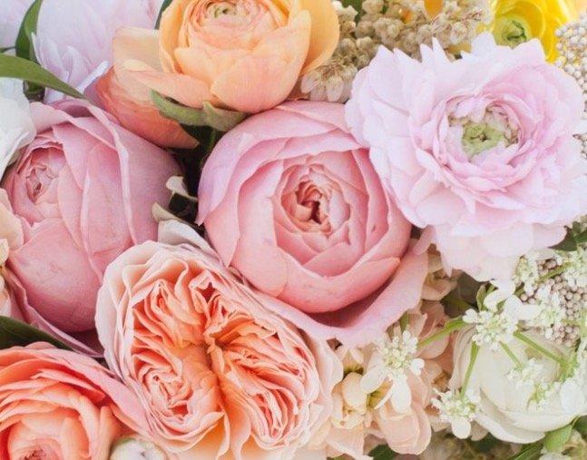 Florist web design