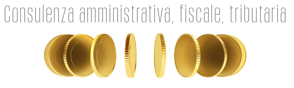 Consulenza amministrativa, fiscale, tributaria