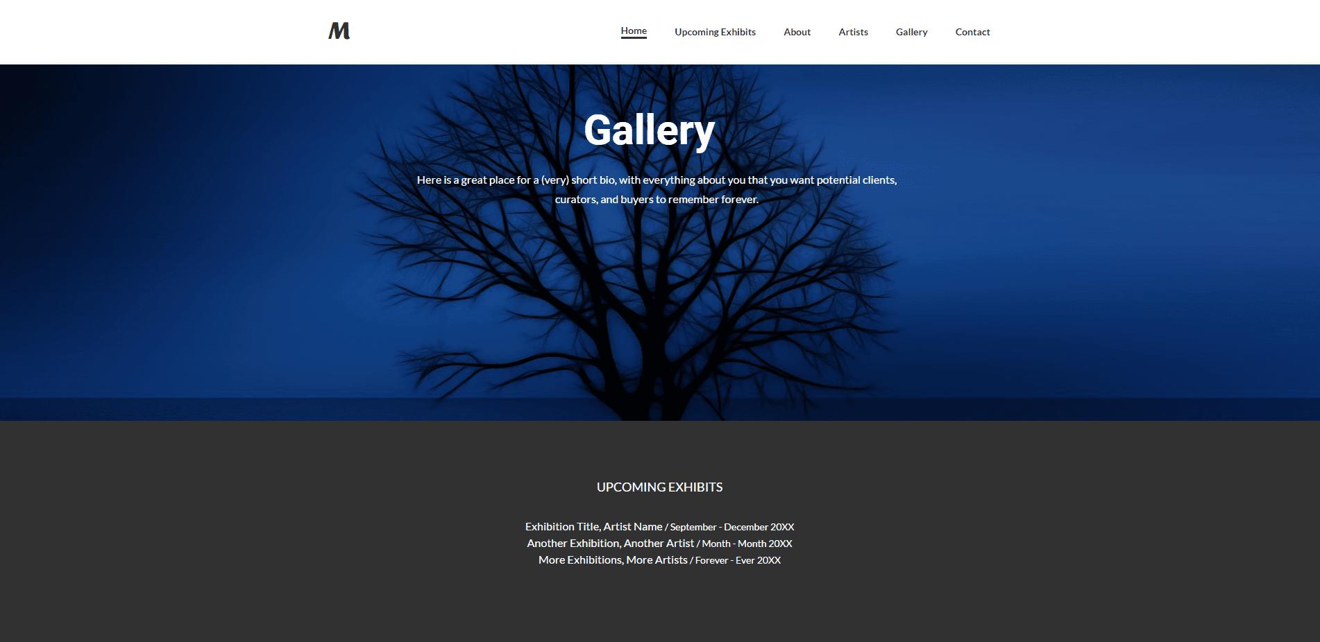 Gallery Website designed by Monster Mobile Marketing