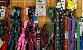 accessori per animali