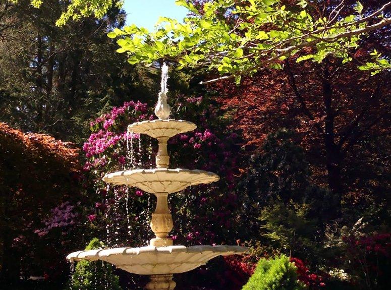 Water fountain in the garden