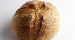 pane biologico, farine biologiche, pane biologico per aziende ospedaliere, pane con farina biologica, farine naturali