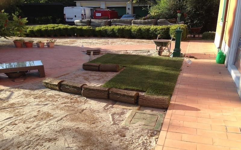 Creazione aree verdi