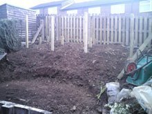 Before fencing