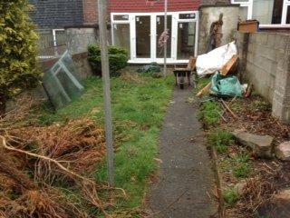 Before garden clearance