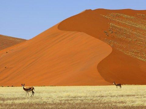 viaggi italian namibia