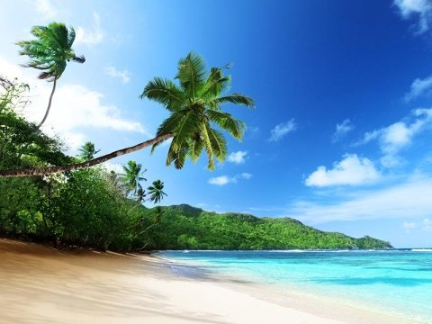 organizzazione viaggio seychelles