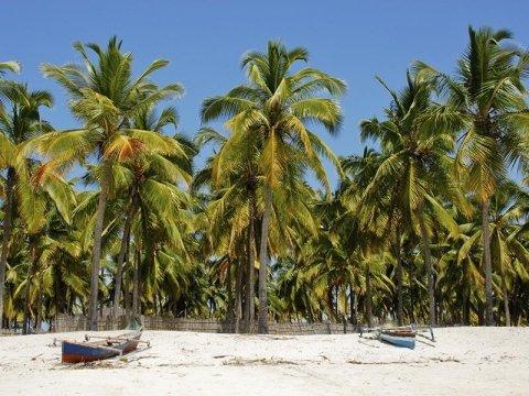 viaggi mozambico