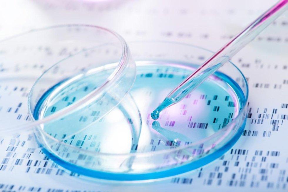 laboratorio analisi Lanciano Fanci