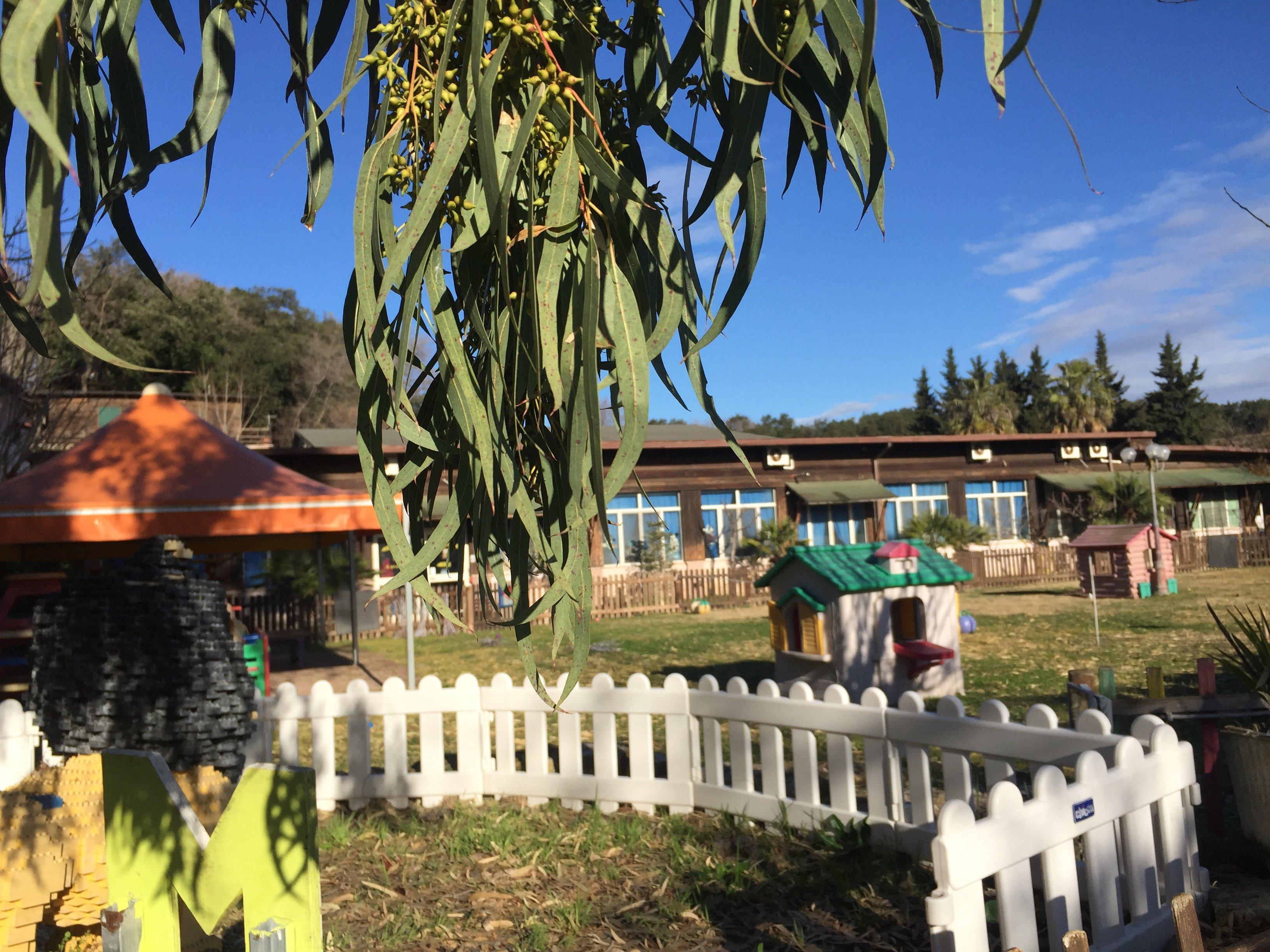 Vista del giardino dell'asilo Mirò